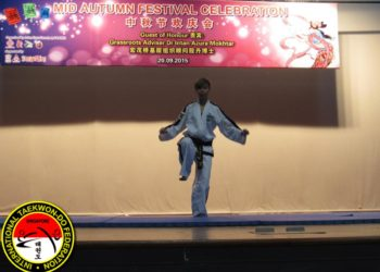 taekwondo demonstration 2015 black belt one-foot stance